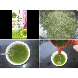 新茶 煎茶 初摘 100g|teaootaen