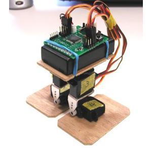 入門ロボキット ダンボット(Danbot)|technologia