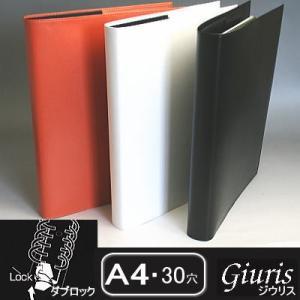 ファイルノート ジウリス ダブロック A4サイズ30穴 バインダー合皮|techouichiba