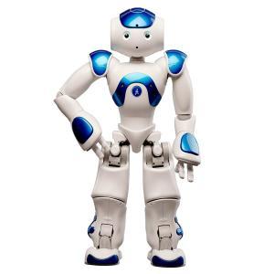 【アルデバラン・ロボティクス社】家庭用小型ロボットNAO|tecline|02