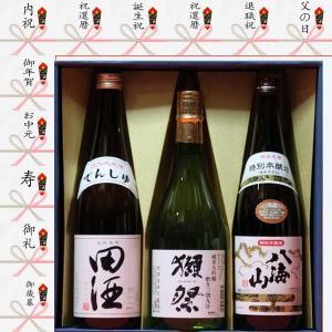 お中元 獺祭 純米大吟醸 磨き39 八海山 本醸造 田酒 特...