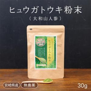 ヒュウガトウキの葉 粉末 高千穂町産 30g|tegeyokaichiba