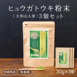 ヒュウガトウキ葉 粉末 高千穂町産 お徳用 30g×3セット|tegeyokaichiba