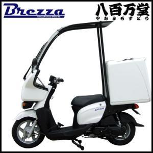 新車 Brezza(ブレッサ) YAMAHA ヤマハギアにルーフキットとリアボックス[ML-1]を取り付けた完成車です|teito-shopping