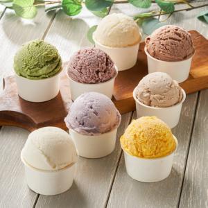 アイスクリーム 砂糖不使用 8種セット お中元 ギフト 詰め合わせ 糖質制限 ダイエット スイーツ シャーベット シュガーレス 糖類 糖質 カット オフ  食品