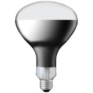 岩崎電気 IR100/110V125WRH (IR100110V125WRH) アイ R形赤外線電球 100V125W