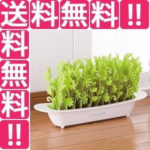 ミクニ MIKUNI エコロジー加湿器 ミスティガーデン2nd アップルグリーン U602-01