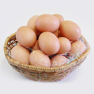 紀泉農場の草卵 たまご36個 平飼いの元気な鶏から生まれた玉子 ちちんぷいぷいで紹介