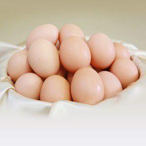 卵 タマゴ ちちんぷいぷいで紹介された紀泉農場 紀州 うめたまご(36個) 玉子