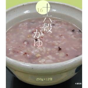 ダイエット おかゆ 非常食 十六穀がゆ 250g×12個セッ...
