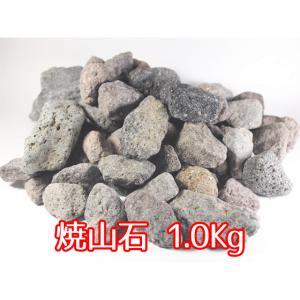玉川温泉の溶岩 焼山石1.0kg|telj