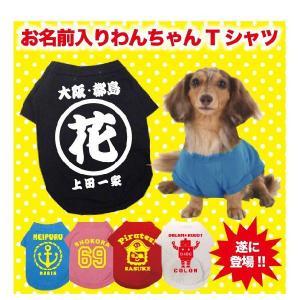 犬用 Tシャツ お名前入りお祭り犬Tシャツ|temegane8