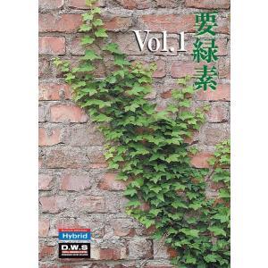 写真素材集 要緑素 Vol.1|temptation