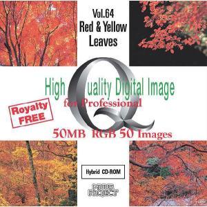 写真素材集 Vol.64 紅葉|temptation