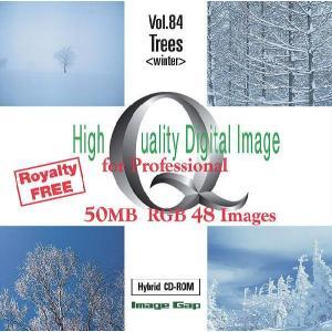 写真素材集 Vol.84 樹木(冬)|temptation
