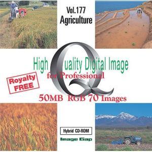 写真素材集 農業|temptation