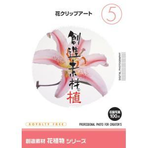 花素材集 創造素材 花植物シリーズ(5)花クリップアート|temptation