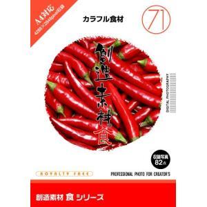 写真素材集 創造素材 食シリーズ(71)カラフル食材 temptation