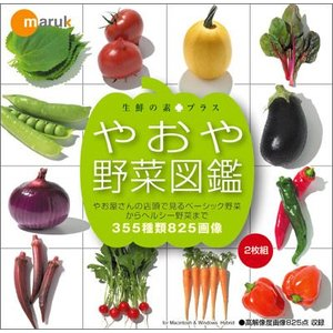 写真素材集 生鮮の素+プラス「やおや野菜図鑑」|temptation