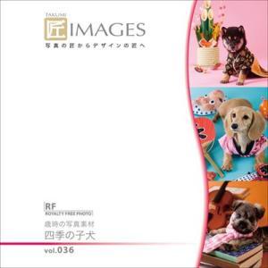 写真素材集 匠IMAGES Vol.36 歳時の写真素材 四季の子犬|temptation