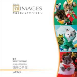 写真素材集 匠IMAGES Vol.37 歳時の写真素材 四季の子猫|temptation