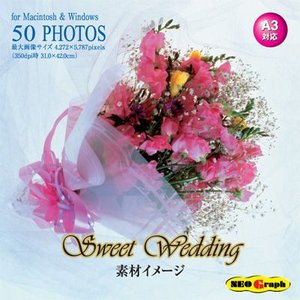写真素材集 Sweet Wedding|temptation