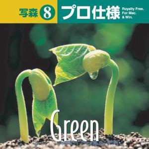 写真素材集 写森 プロ仕様 Vol.8 緑|temptation