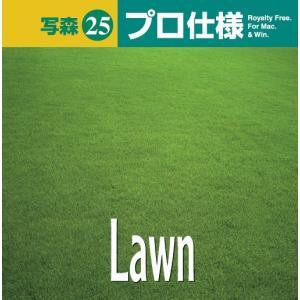 写真素材集 写森 プロ仕様 Vol.25 芝生・緑|temptation