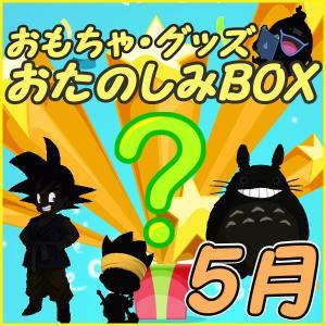 おたのしみBOX (おもちゃVol.5) 5月BOX 何が届...