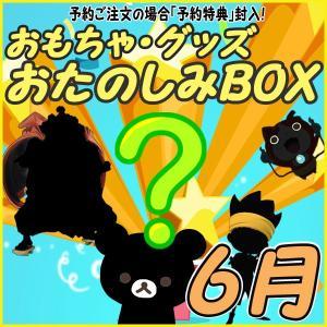 おたのしみBOX (おもちゃVol.6) 6月BOX 何が届...