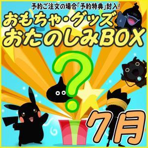 おたのしみBOX (おもちゃVol.7) 7月BOX 何が届...