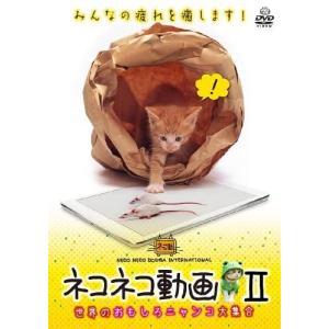 ネコネコ動画II-世界のおもしろニャンコ大集合-  <DVD>|tenbin-do