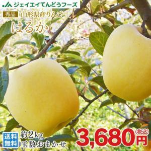 りんご 化粧箱入り 『はるか』 約2kg あすつく 【蜜入保...