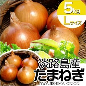 玉ねぎ 淡路島 たまねぎ 5kg  Lサイズ サラダ玉ねぎ
