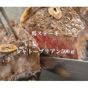 馬ステーキ シャトーブリアン500g 馬肉 馬刺 ※馬刺醤油10P付 tenma8348