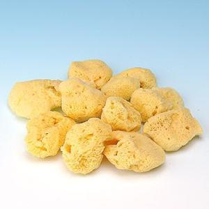 ファンデーション用海綿スポンジ/メイクアップスポンジ(天然海綿SSサイズ)・10個入|tennen-sponge