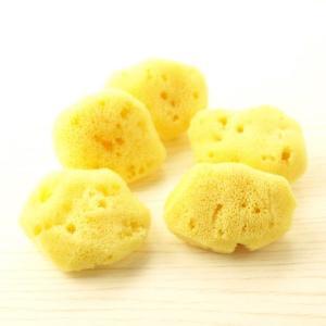 ファンデーション用海綿スポンジ/洗顔・メイク落とし用スポンジ(天然海綿Sサイズ)・ 5個入|tennen-sponge