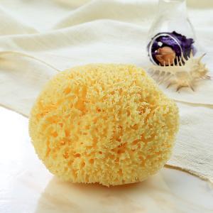 天然海綿ボディスポンジ・【スポンジの王様!】 ふわふわの柔らかさ!ハニコム種クィーンサイズ <Glande グランデ>|tennen-sponge
