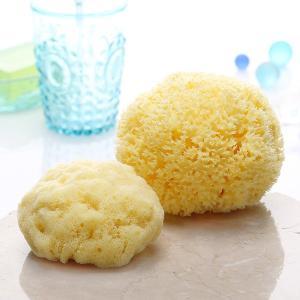 最高級・天然海綿ボディスポンジ2種の限定セット|tennen-sponge