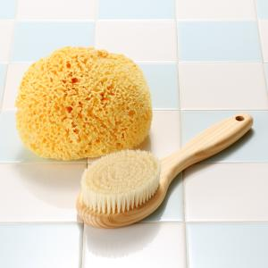 ボディブラシ (豚毛・長さ24cm) と地中海産天然海綿スポンジのお買得セット |tennen-sponge