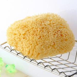 スポンジトレイ付きセット 天然海綿ボディスポンジ − ハニコム種Lサイズ(約12-14cm)ソフトタイプ <レジーナ>|tennen-sponge