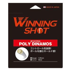 硬式テニス用 単張りガット ウィニングショット ポリジナモス[1.25mm/1.30mm/カラー:シ...