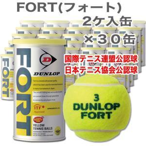 ダンロップ フォート 2個入り缶 X30缶 6...の関連商品3