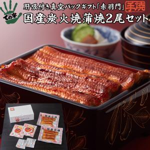 国産うなぎ 赤羽門(あかばねもん)手焼き 炭火蒲焼 100g×2尾 ギフトセット|tenoji
