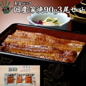 うなぎ 鰻 国産 蒲焼 ギフト プレゼント 90g×3セット ての字|tenoji