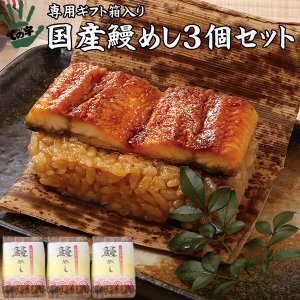 うなぎ 鰻 国産 蒲焼 ギフト プレゼント おこわ 鰻めし 100g×3個セット ての字|tenoji