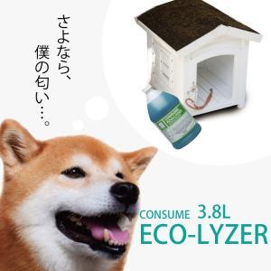 洗剤 消臭用 日常清掃用 バイオ除菌消臭クリーナー エコライザー 3.8L EPA登録除菌洗剤 アム...