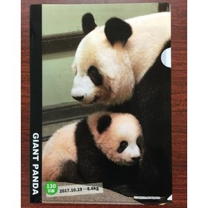 上野動物園パンダ シャンシャン公開記念 クリアホルダーA|tenshi