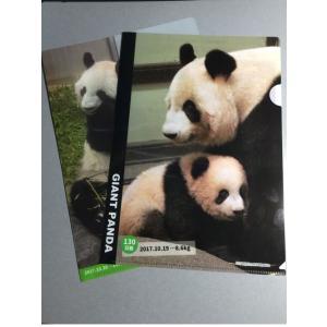 上野動物園パンダ シャンシャン公開記念クリアホルダー2枚セット|tenshi