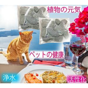 猫 美味しい水 水やりに おいしいお水の素 ミネラル水の素 天照石 犬 鳥 ウサギ リスなどの小動物にも |tenshouseki38